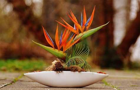 learn floral design