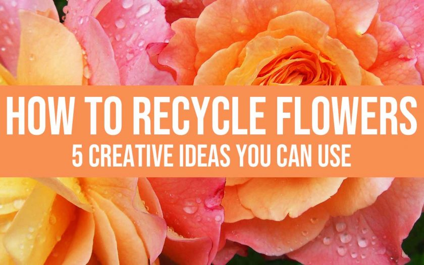 recycle flowers