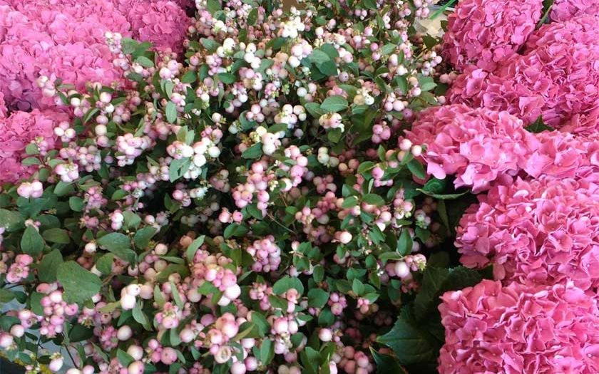 start a floral business