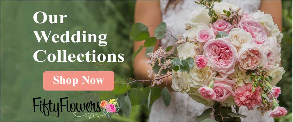 dfy wedding collections
